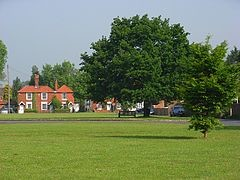 M4 dog friendly pub and dog walk near Windsor, Berkshire - Driving with Dogs