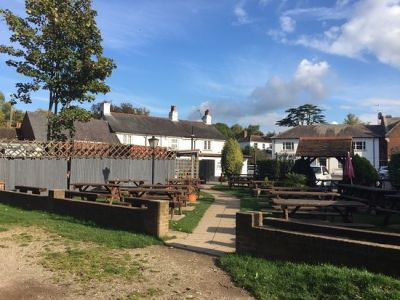 A3 dog-friendly pub and dog walk near Woking, Surrey - Driving with Dogs