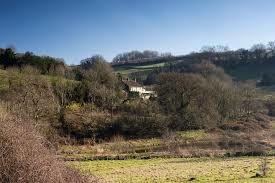A30 dog walk and lovely dog-friendly pub near Chard, Somerset - Driving with Dogs