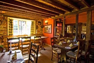 M4 dog friendly pub and dog walk near Reading, Berkshire - Driving with Dogs