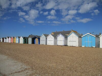 Felixstowe dog-friendly beach and cafe, Suffolk - Driving with Dogs