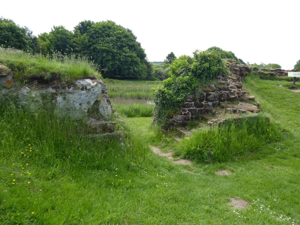 King of the Castle picnic spot and dog funtime, Lincolnshire - Dog walks in Lincolnshire