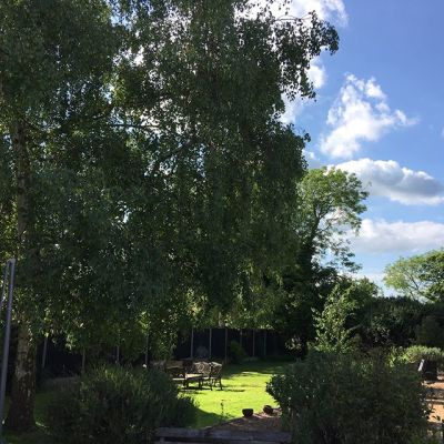Super easy dog walk and a dog-friendly pub near St Neots, Cambridgeshire - Driving with Dogs