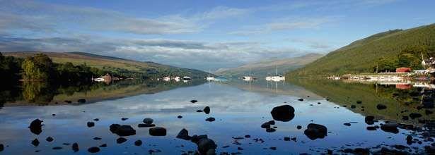 Forest and lochside dog walk, Scotland - dog walks and glamping.jpg