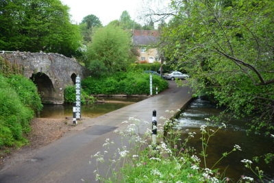 A367 dog walk with lots to see and a dog-friendly pub, Somerset - Driving with Dogs