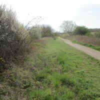 Brampton Valley Way dog walk, Northamptonshire - Dog walks near the A14 Northamptonshire.JPG