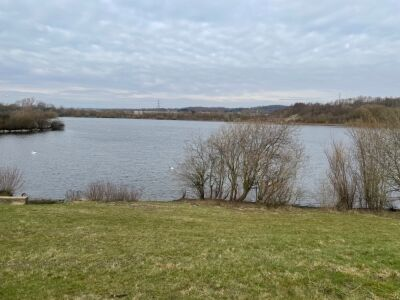 Extra services with circular lake walk, West Yorkshire - Driving with Dogs