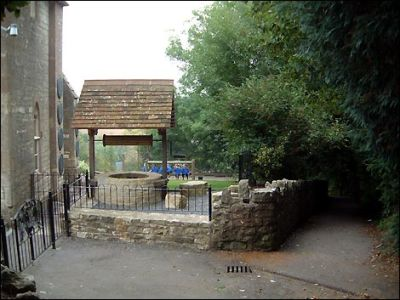 Dog-friendly pub and dog walk, Somerset - Driving with Dogs