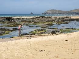 Constantine Bay dog walk and dog-friendly beach, Cornwall - Driving with Dogs