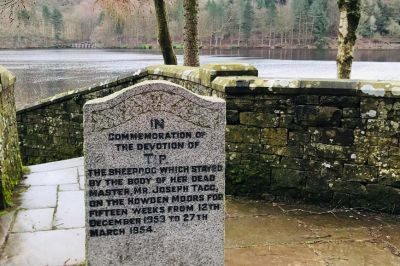 A memorial walk for a brave collie, Derbyshire - Driving with Dogs