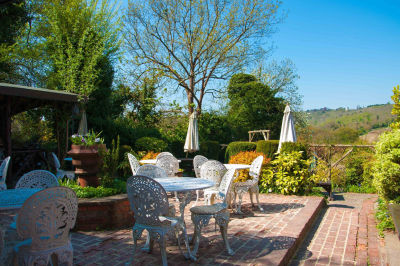 A24 dog-friendly pub and dog walk in the Surrey hills, Surrey - Driving with Dogs