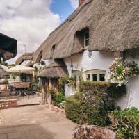 Medieval inn and dog walk near Andover, Wiltshire - Wiltshire dog friendly pub and dog walk