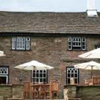 Macclesfield canal dog walk and dog-friendly inn, Cheshire - dog-friendly pubs with walks in cheshire.jpg