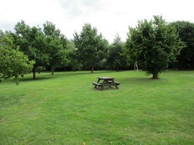 Dog-friendly pub and dog walk near Didcot, Oxfordshire - Driving with Dogs