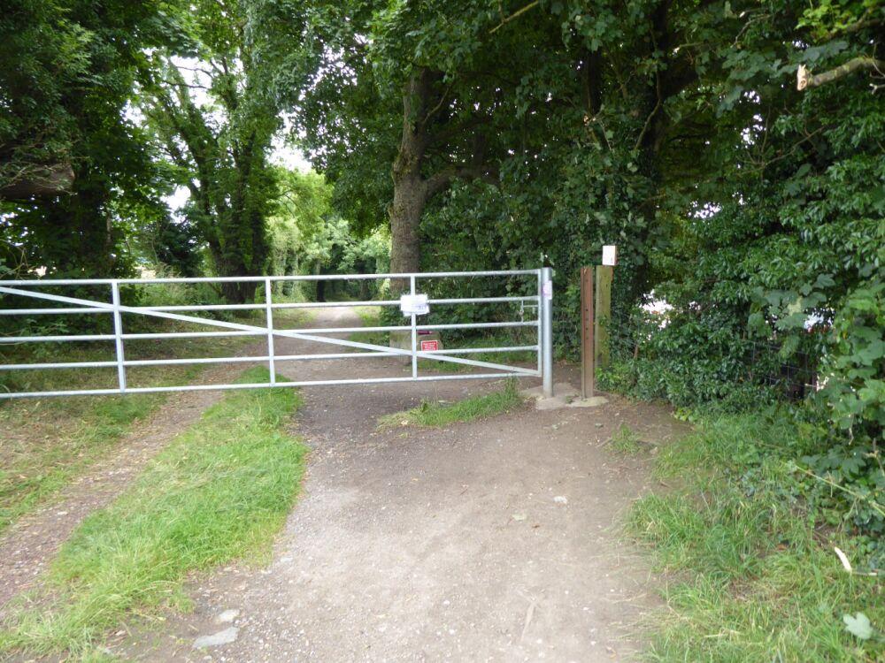 Heritage Coast and woodland dog walk, County Durham - Dog walks in County Durham