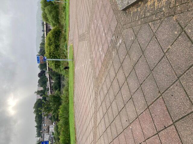 North Inch park and garden, Scotland - B9D87968-AF07-46B6-8E16-3A11F06729D1.jpeg