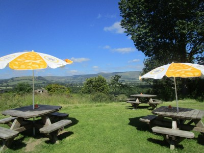 A44 dog-friendly dining in style, Wales - Driving with Dogs
