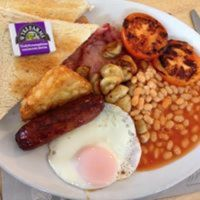 A303 Services near Yeovil with cafe and dog exercising, Somerset - A303 dog-friendly services.jpg