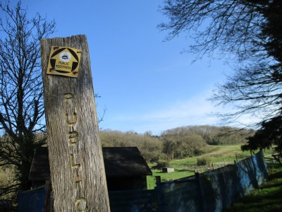 A39 Wookey for Woofers, Somerset - Driving with Dogs