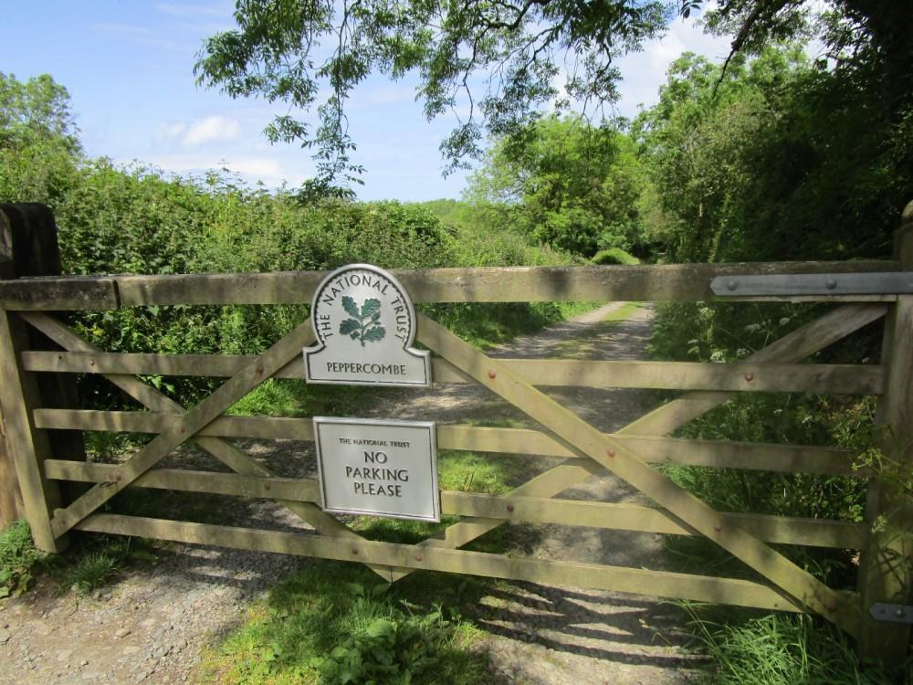 A39 dog-friendly pub and dog walk near Bideford, Devon - Devon dog walk and dog-friendly pub.JPG