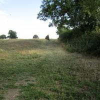 A46 dog walk and dog-friendly pub, Leicestershire - Leicestershire dog-friendly pub and dog walk