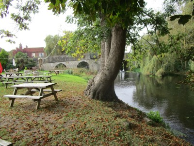 Riverside dog-friendly pub and dog walk, Kent - Driving with Dogs
