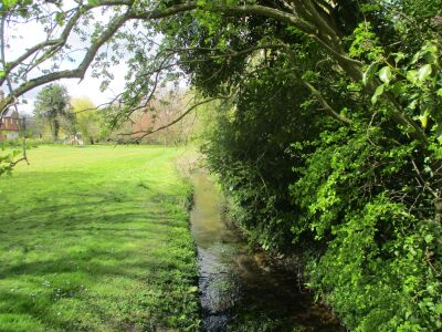 Village green for picnics and a dog-friendly pub, Norfolk - Driving with Dogs