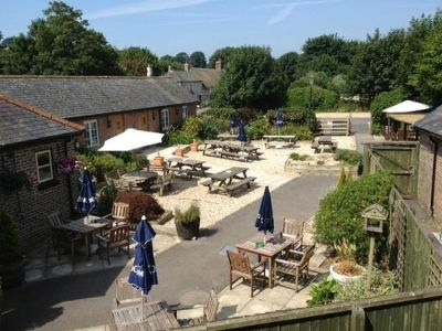 Dog-friendly B&B and dog walk near Dorchester, Dorset - Driving with Dogs