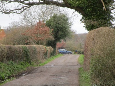A21 dog-friendly pub and dog walk North Downs, Kent - Driving with Dogs