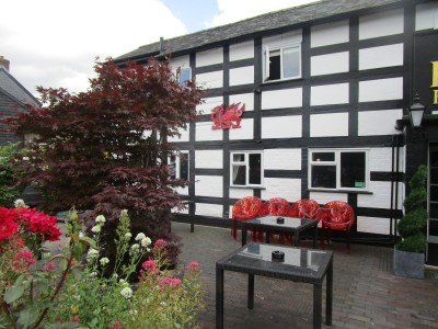 A483 dog-friendly pub, Powys, Wales - Driving with Dogs