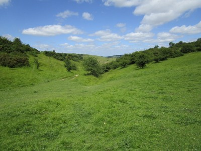 A435 dog walk and dog-friendly pub near Cheltenham, Gloucestershire - Driving with Dogs