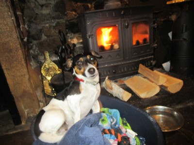 Dalesway dog walk and dog-friendly pub, North Yorkshire - Driving with Dogs