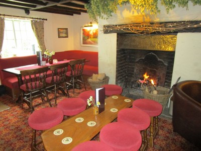 A22 forest walk and dog-friendly pub near Hailsham, East Sussex - Driving with Dogs