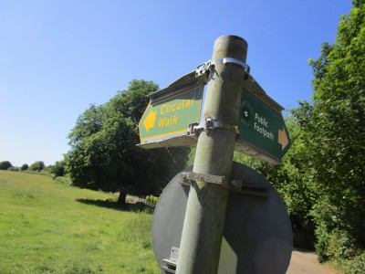 Hambleden valley dog walk and dog-friendly pub, Buckinghamshire - Driving with Dogs