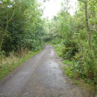 Lakeside dog walk with cafe and caravan parking, Northumberland - Country park and cafe Northumberland