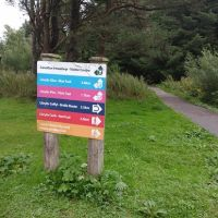 Country Park dog walk and cafe near Ammanford, Wales - dog walks in a country park near Llanelli.jpg