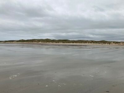 Large sandy and dog-friendly beach, Scotland - Driving with Dogs