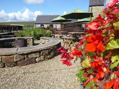 The Hollybush dog-friendly country pub near Hexham, Northumberland - Driving with Dogs