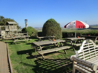 A259 dog walk and dog-friendly pub near Winchelsea, East Sussex - Driving with Dogs