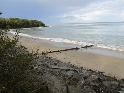 Dog-friendly beach and walk near Newquay, Wales - Driving with Dogs