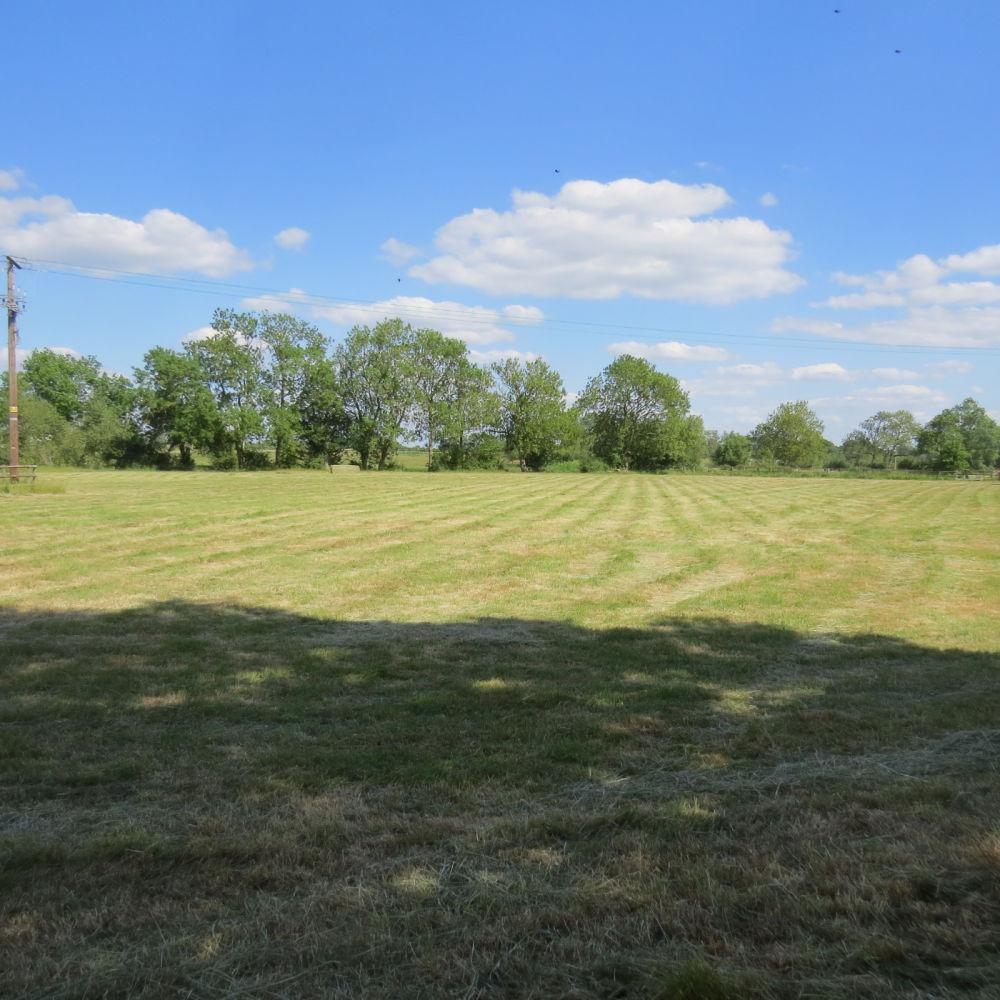 River Meadow Dog Walking Fields, Warwickshire - IMG_8195.JPG
