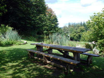 A286 dog-friendly pub and dog walk in the South Downs, West Sussex - Driving with Dogs