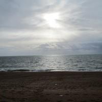 A35 Jurassic coast dog walk, Dorset - IMG_0421.JPG