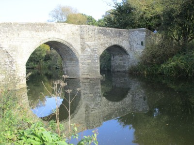 Waterside dog walk near Maidstone, Kent - Driving with Dogs