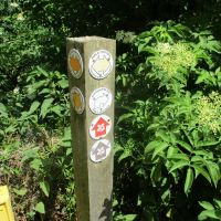 Scenic Lock and riverside path, Oxfordshire - Oxfordshire dog walks.JPG