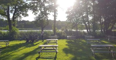 Delamere dog walks and dog-friendly pub, Cheshire - Driving with Dogs