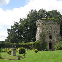 A472 Pretty market town and a woodland dog walk, Wales - Dog-friendly pubs and dog walks in Wales.jpg