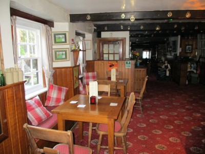 A351 Forest walk and dog-friendly pub, Dorset - Driving with Dogs