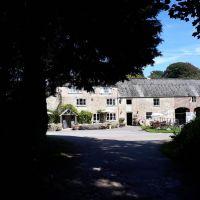Dog-friendly tea rooms and short walk, Dorset - Dorset tea rooms.jpg