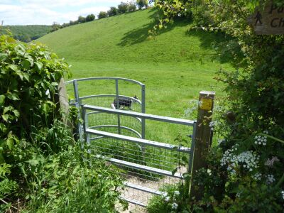 Wonderful walk in the wolds and a dog-friendly pub, East Yorkshire - Driving with Dogs